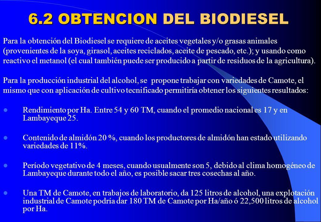 6.2 OBTENCION DEL BIODIESEL