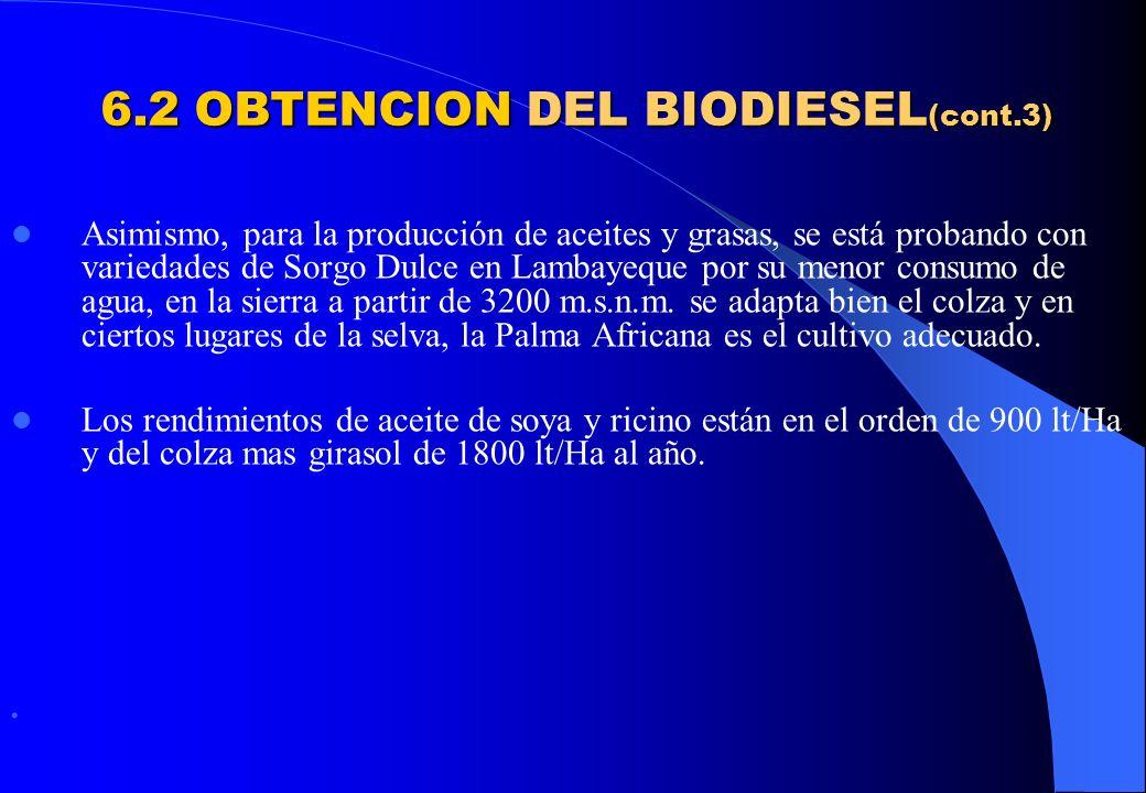 6.2 OBTENCION DEL BIODIESEL(cont.3)