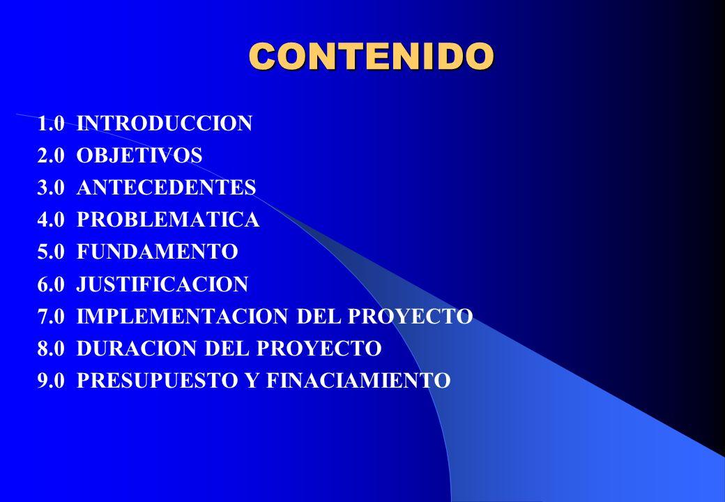 CONTENIDO 1.0 INTRODUCCION 2.0 OBJETIVOS 3.0 ANTECEDENTES