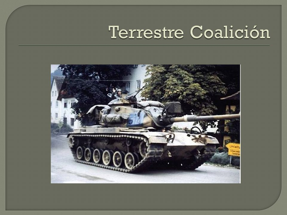 Terrestre Coalición