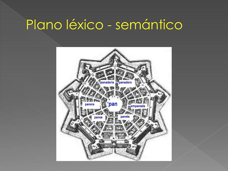 Plano léxico - semántico