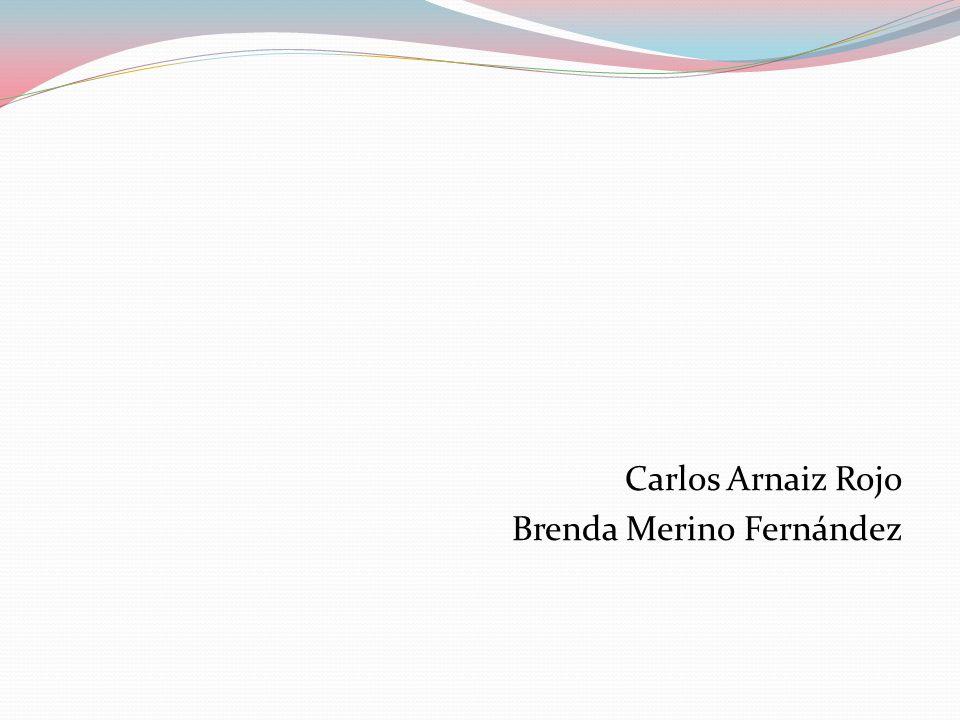 Carlos Arnaiz Rojo Brenda Merino Fernández