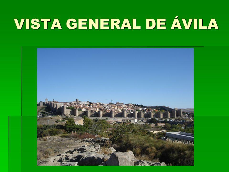 VISTA GENERAL DE ÁVILA