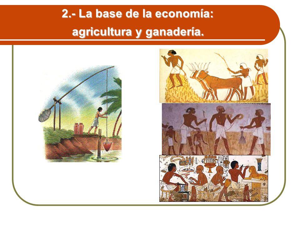 2.- La base de la economía: agricultura y ganadería.
