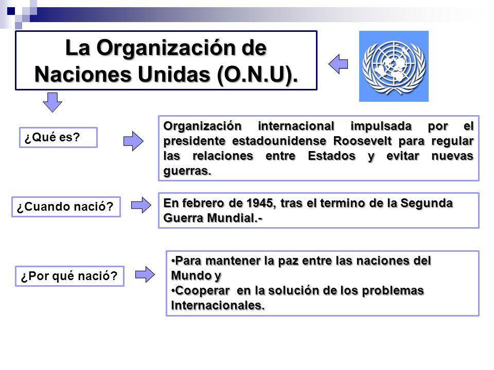 La Organización de Naciones Unidas (O.N.U).
