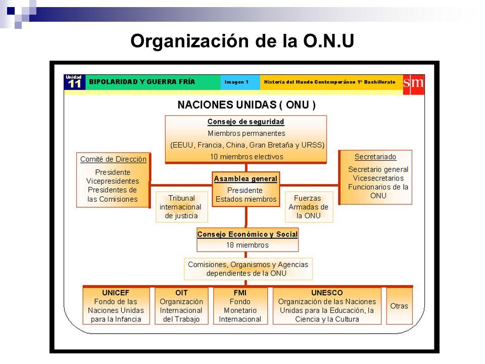 Organización de la O.N.U