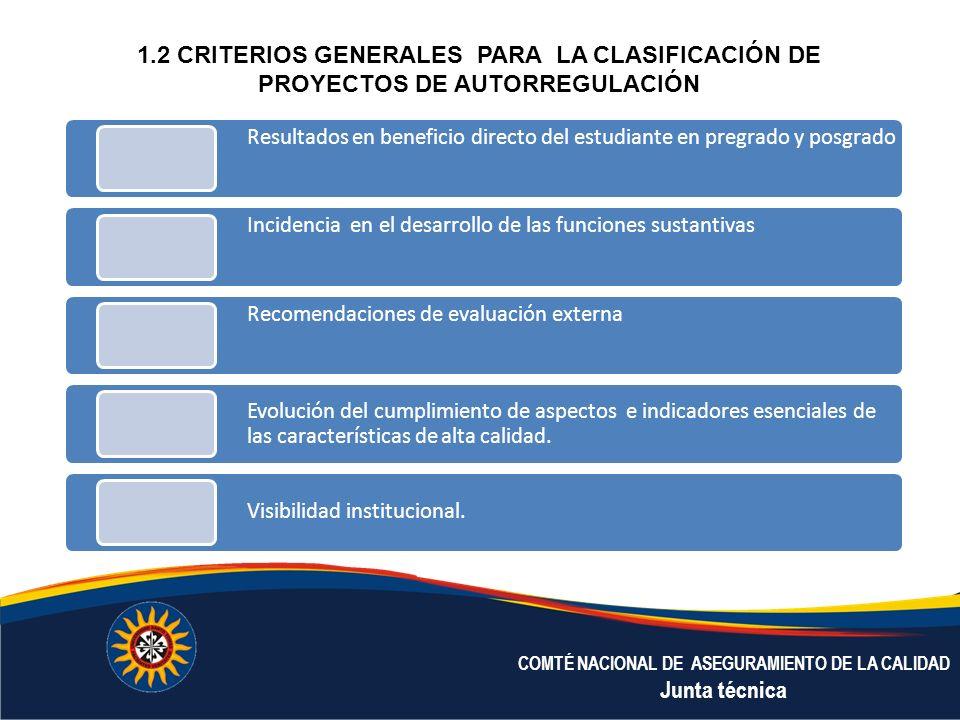 1.2 CRITERIOS GENERALES PARA LA CLASIFICACIÓN DE PROYECTOS DE AUTORREGULACIÓN