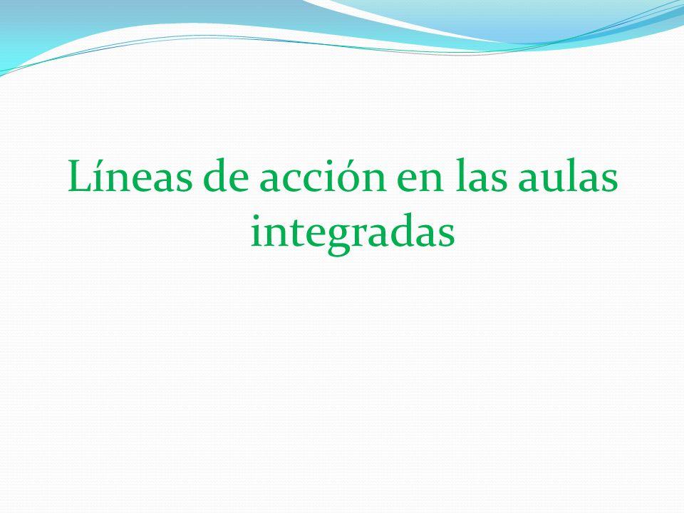 Líneas de acción en las aulas integradas