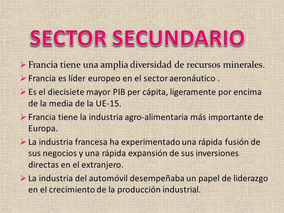 SECTOR SECUNDARIO Francia tiene una amplia diversidad de recursos minerales. Francia es líder europeo en el sector aeronáutico .
