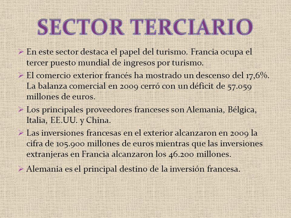 SECTOR TERCIARIO En este sector destaca el papel del turismo. Francia ocupa el tercer puesto mundial de ingresos por turismo.