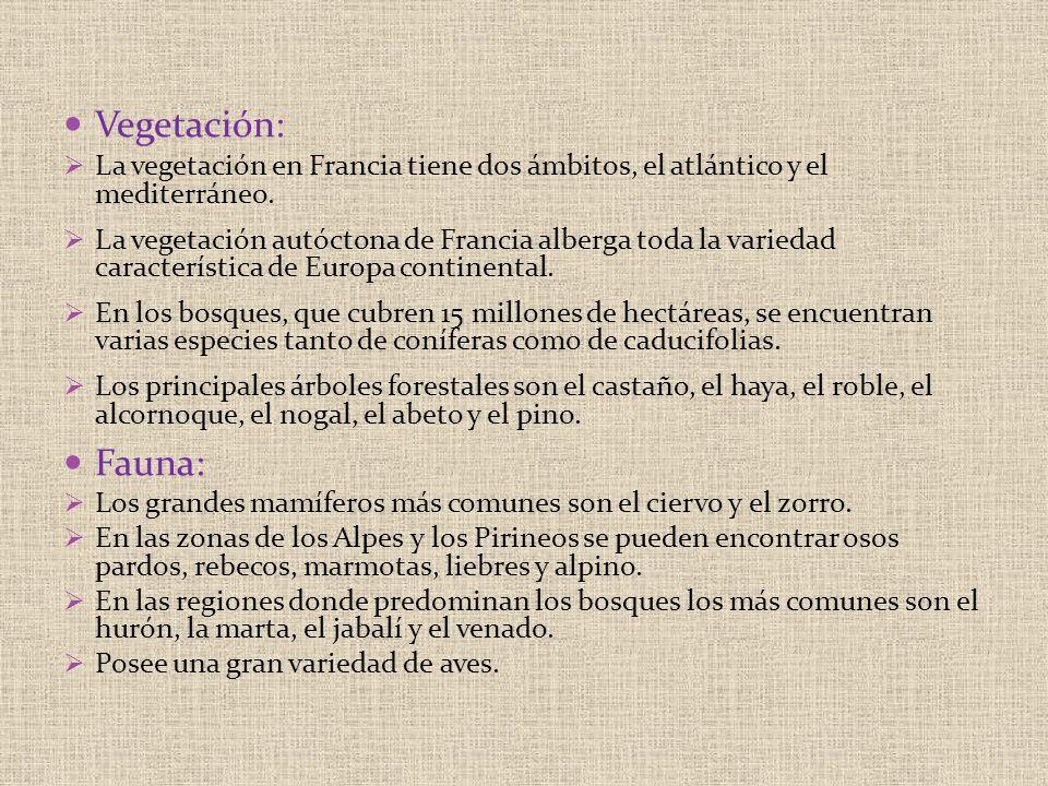 Vegetación: La vegetación en Francia tiene dos ámbitos, el atlántico y el mediterráneo.