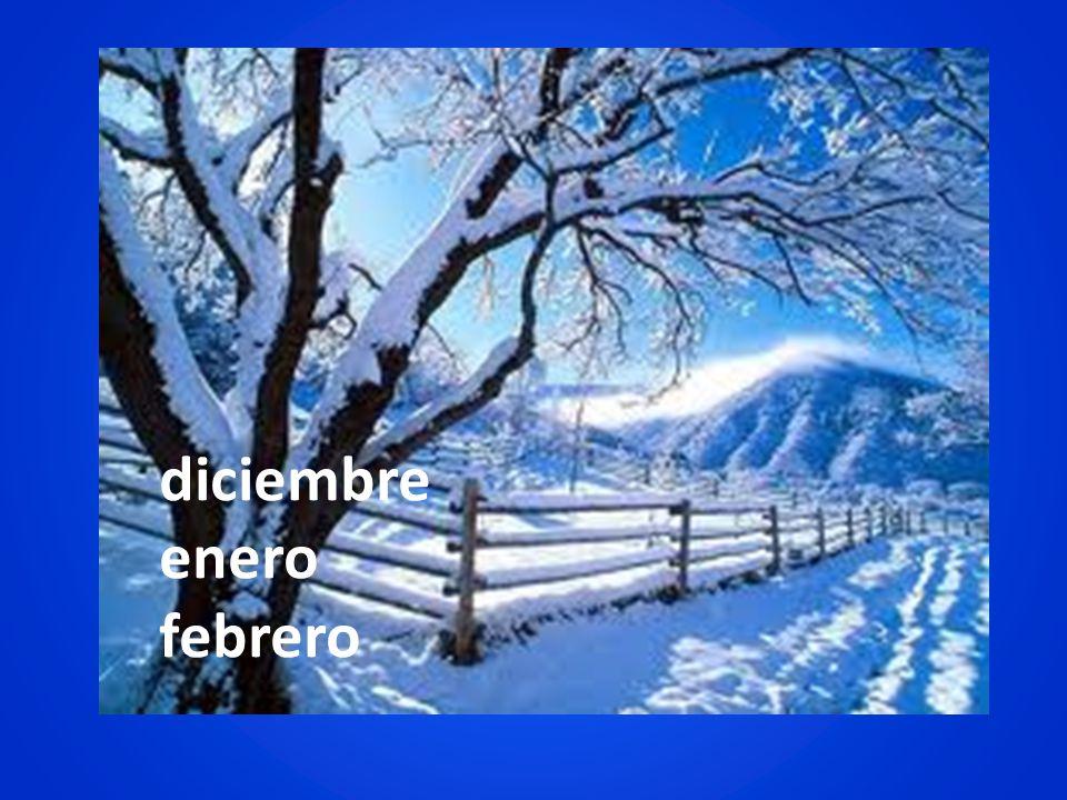 diciembre enero febrero