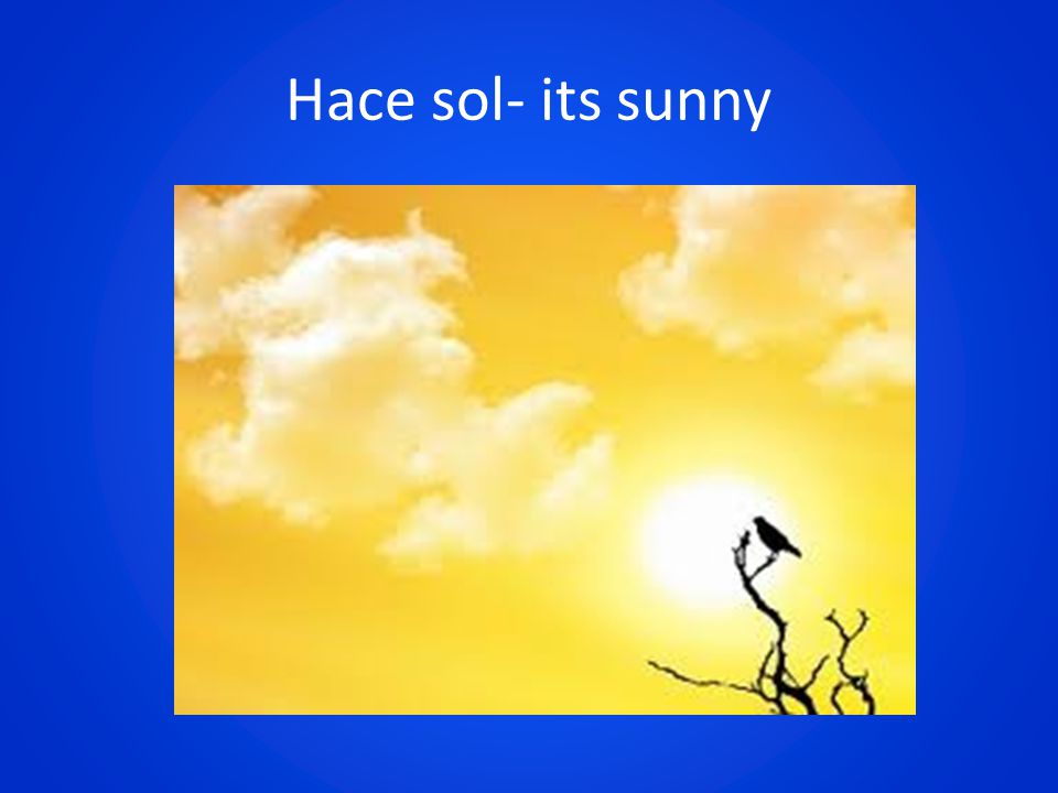 Hace sol- its sunny