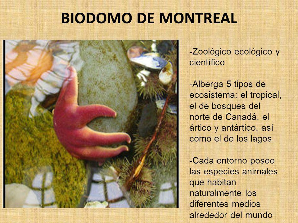 BIODOMO DE MONTREAL -Zoológico ecológico y científico