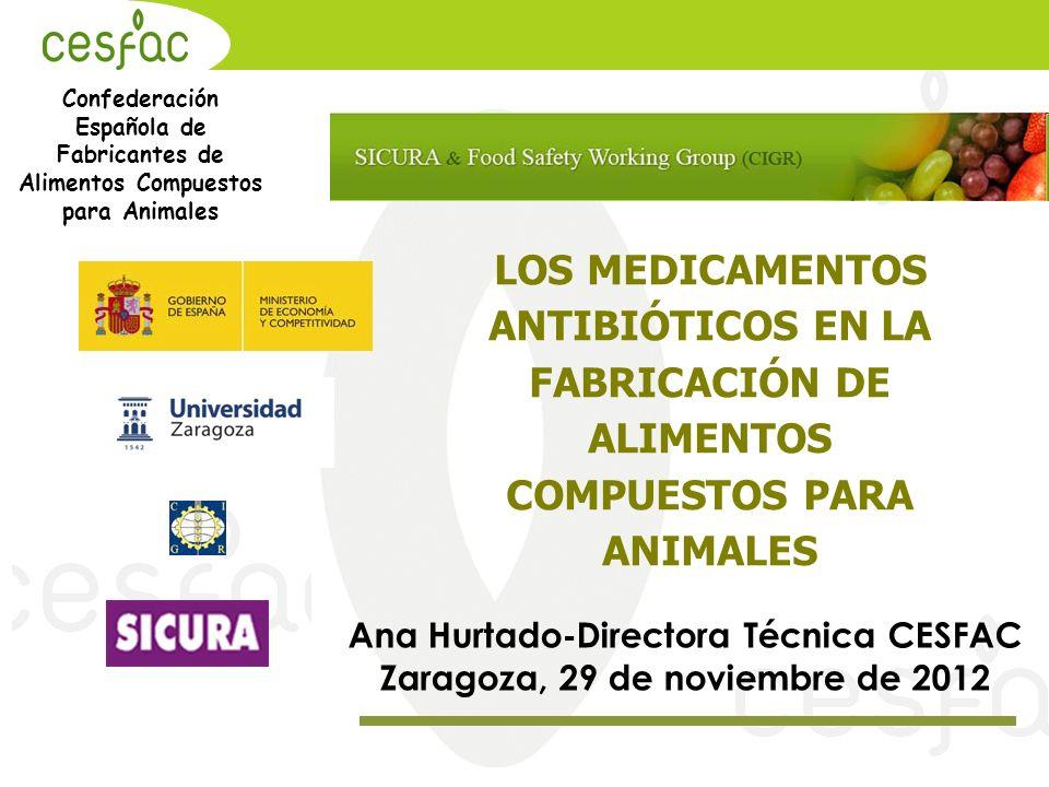 Ana Hurtado-Directora Técnica CESFAC Zaragoza, 29 de noviembre de 2012