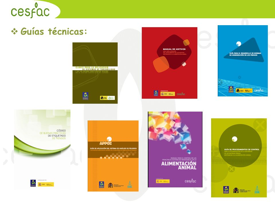 20.09.2010 Guías técnicas: