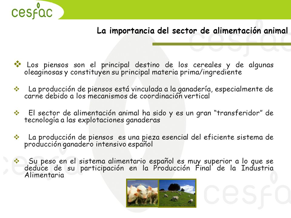 La importancia del sector de alimentación animal