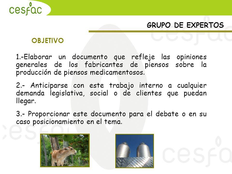 GRUPO DE EXPERTOS OBJETIVO.