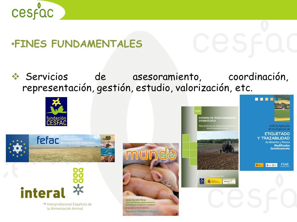 20.09.2010 FINES FUNDAMENTALES.