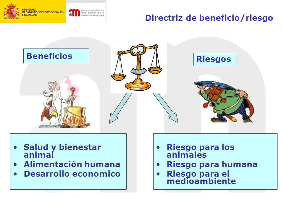 Directriz de beneficio/riesgo