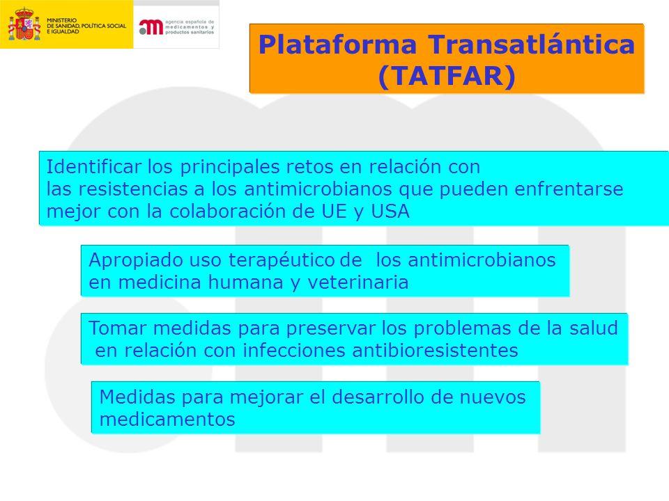Plataforma Transatlántica