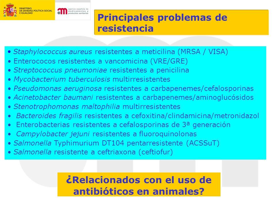 ¿Relacionados con el uso de antibióticos en animales