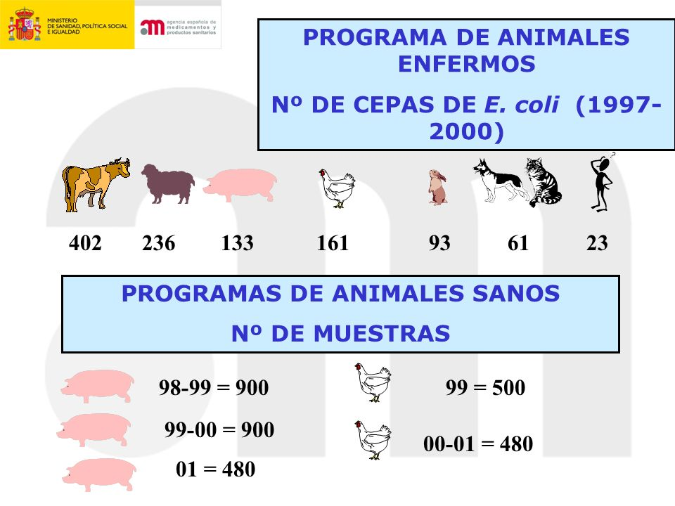 PROGRAMA DE ANIMALES ENFERMOS PROGRAMAS DE ANIMALES SANOS