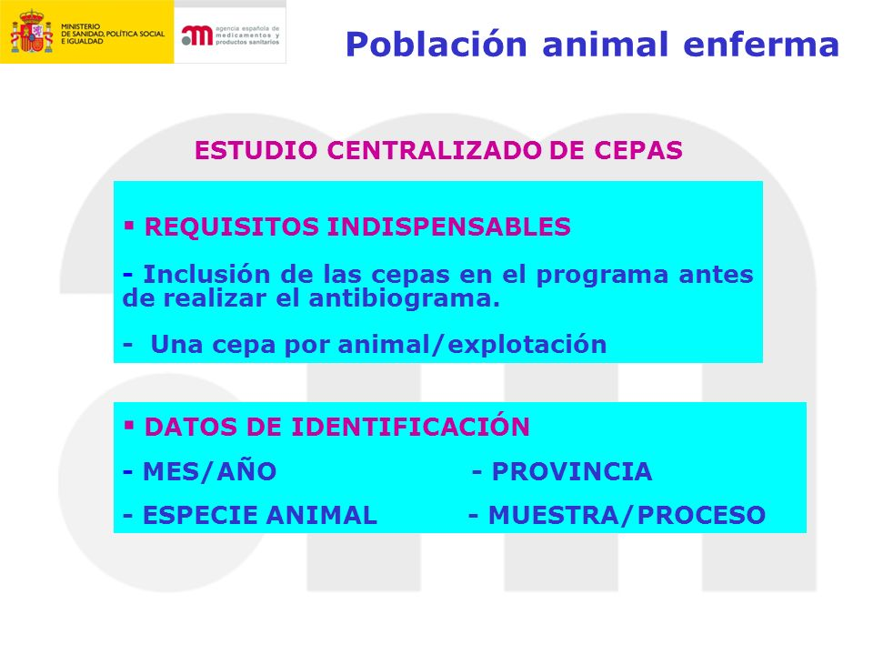Población animal enferma