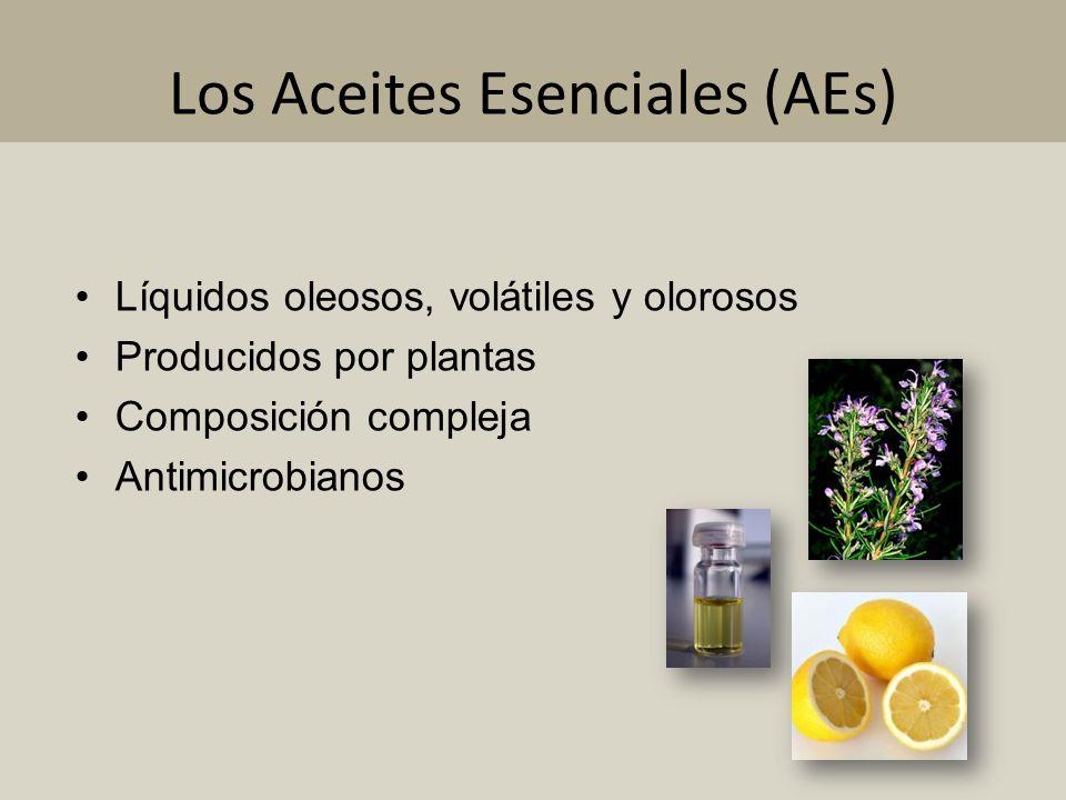 Los Aceites Esenciales (AEs)