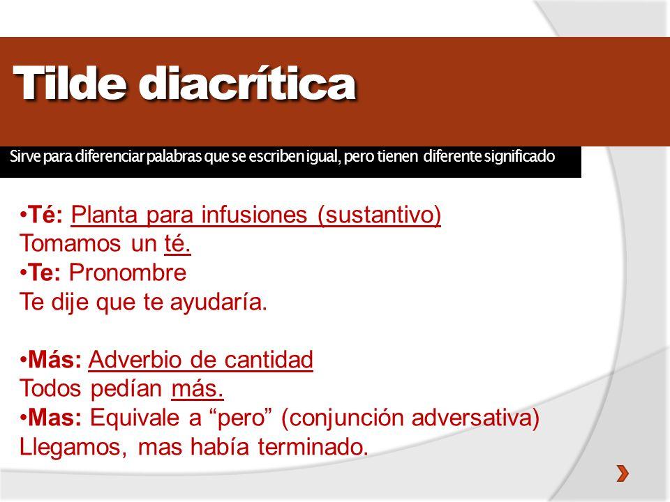 Tilde diacrítica Té: Planta para infusiones (sustantivo)
