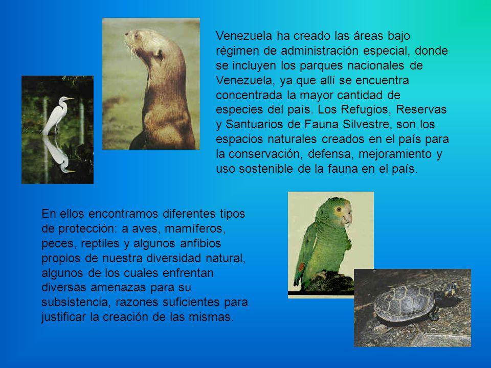 Venezuela ha creado las áreas bajo régimen de administración especial, donde se incluyen los parques nacionales de Venezuela, ya que allí se encuentra concentrada la mayor cantidad de especies del país. Los Refugios, Reservas y Santuarios de Fauna Silvestre, son los espacios naturales creados en el país para la conservación, defensa, mejoramiento y uso sostenible de la fauna en el país.