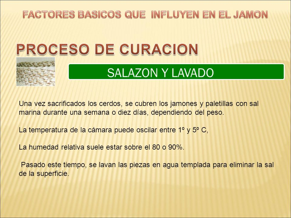 SALAZON Y LAVADO