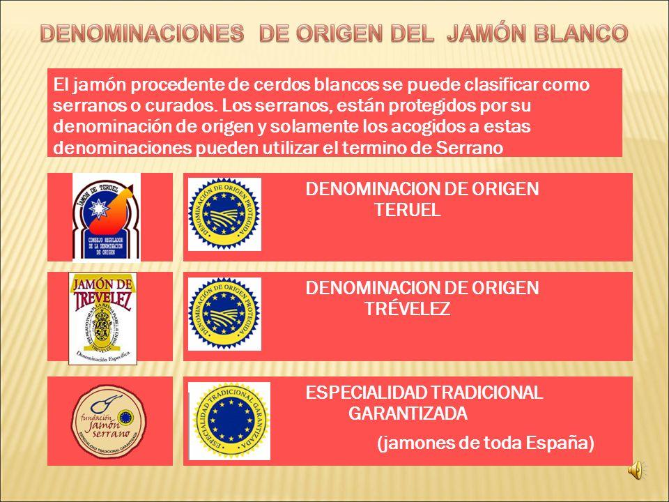 DENOMINACION DE ORIGEN TERUEL