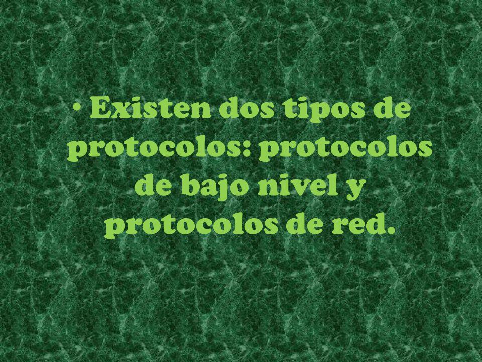 Existen dos tipos de protocolos: protocolos de bajo nivel y protocolos de red.
