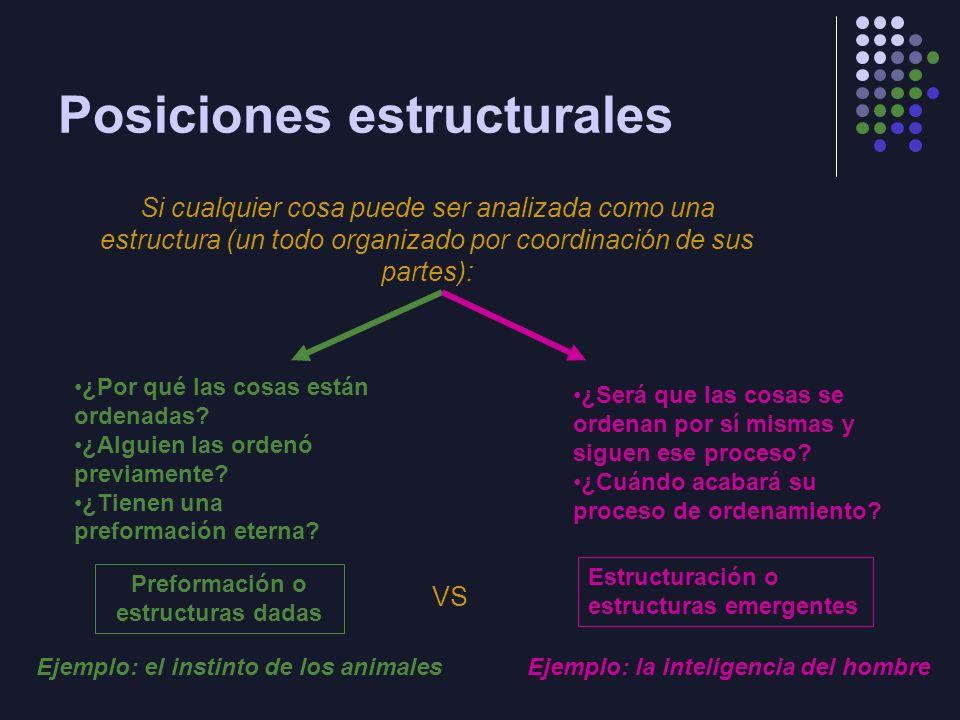 Posiciones estructurales