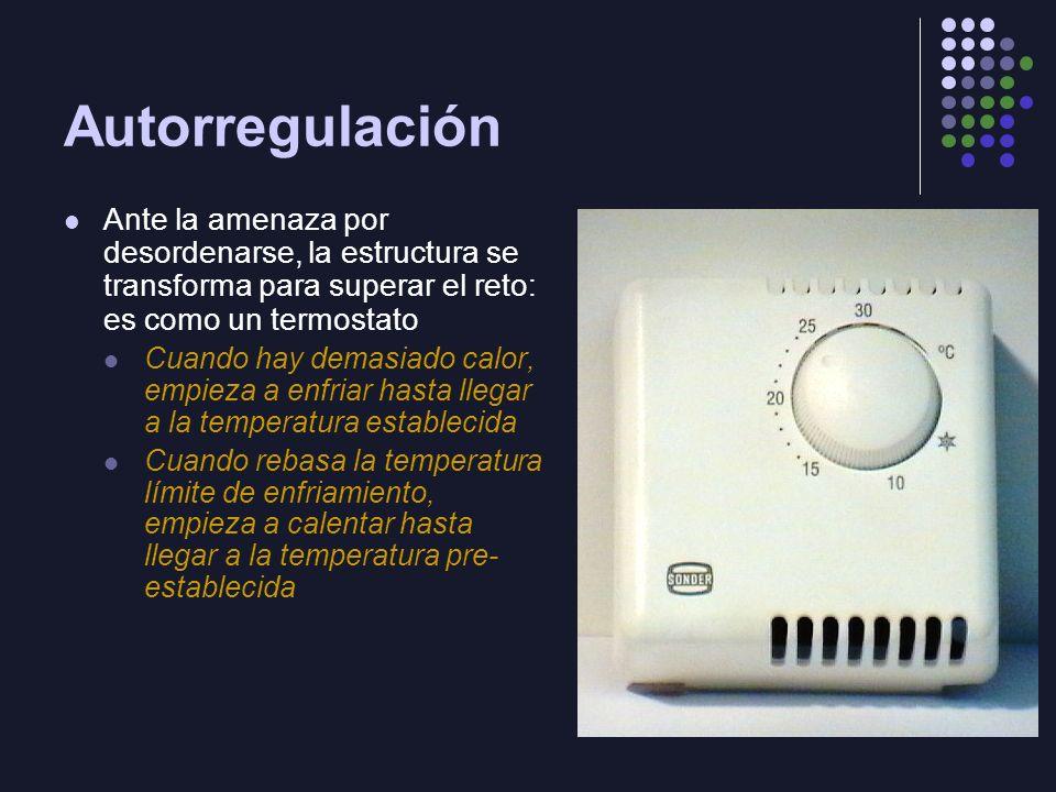Autorregulación Ante la amenaza por desordenarse, la estructura se transforma para superar el reto: es como un termostato.