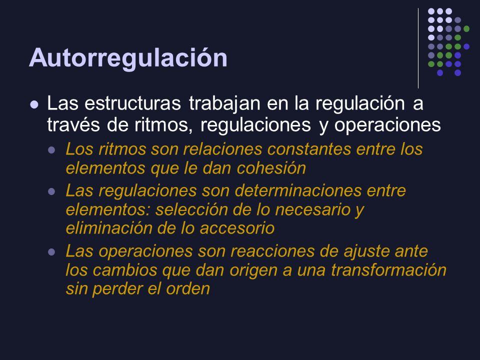Autorregulación Las estructuras trabajan en la regulación a través de ritmos, regulaciones y operaciones.