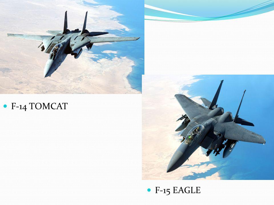F-14 TOMCAT F-15 EAGLE