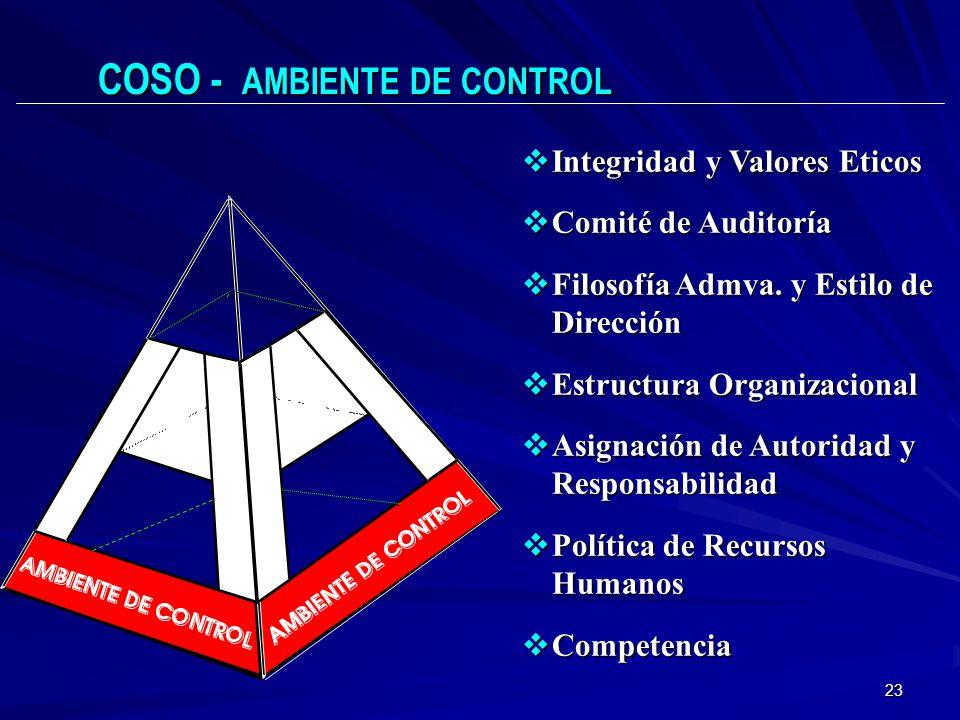 COSO - AMBIENTE DE CONTROL