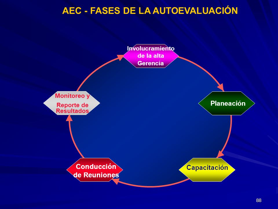 AEC - FASES DE LA AUTOEVALUACIÓN