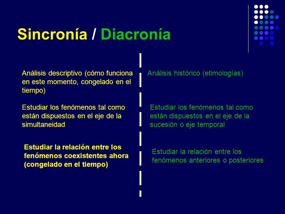 Sincronía / Diacronía Análisis descriptivo (cómo funciona en este momento, congelado en el tiempo) Análisis histórico (etimologías)