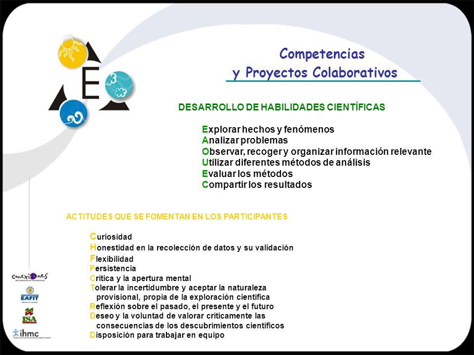 y Proyectos Colaborativos