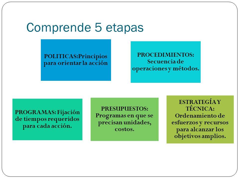Comprende 5 etapas POLITICAS:Principios para orientar la acción