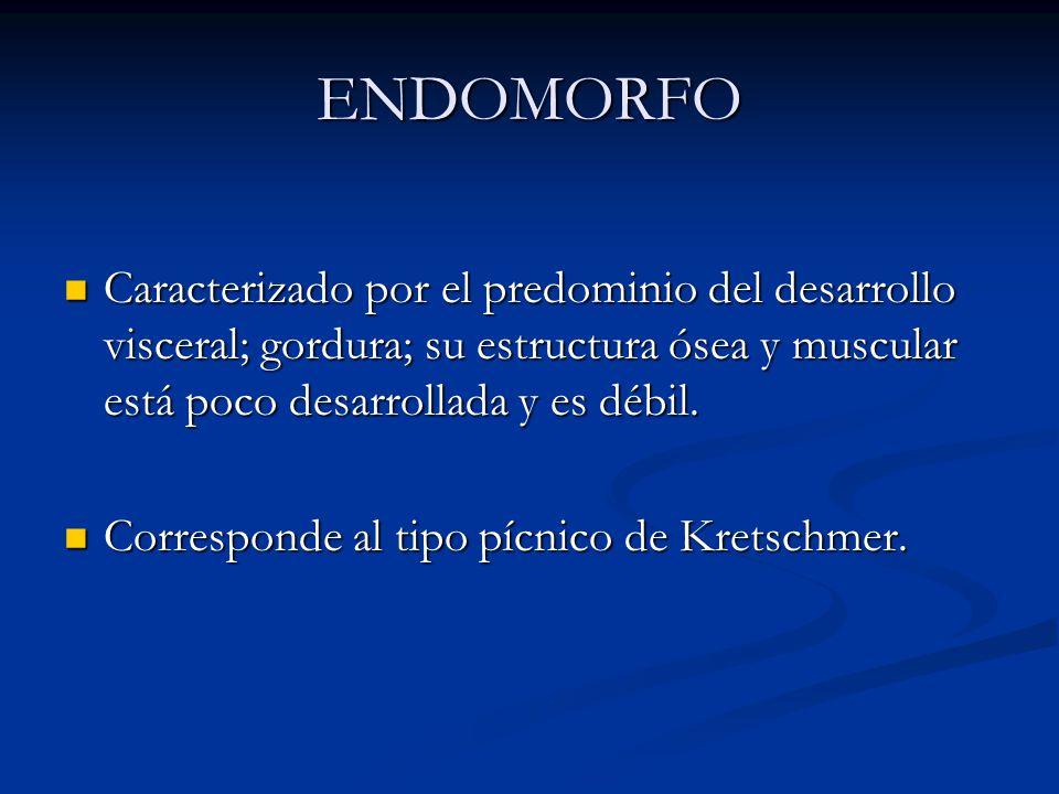 ENDOMORFO Caracterizado por el predominio del desarrollo visceral; gordura; su estructura ósea y muscular está poco desarrollada y es débil.