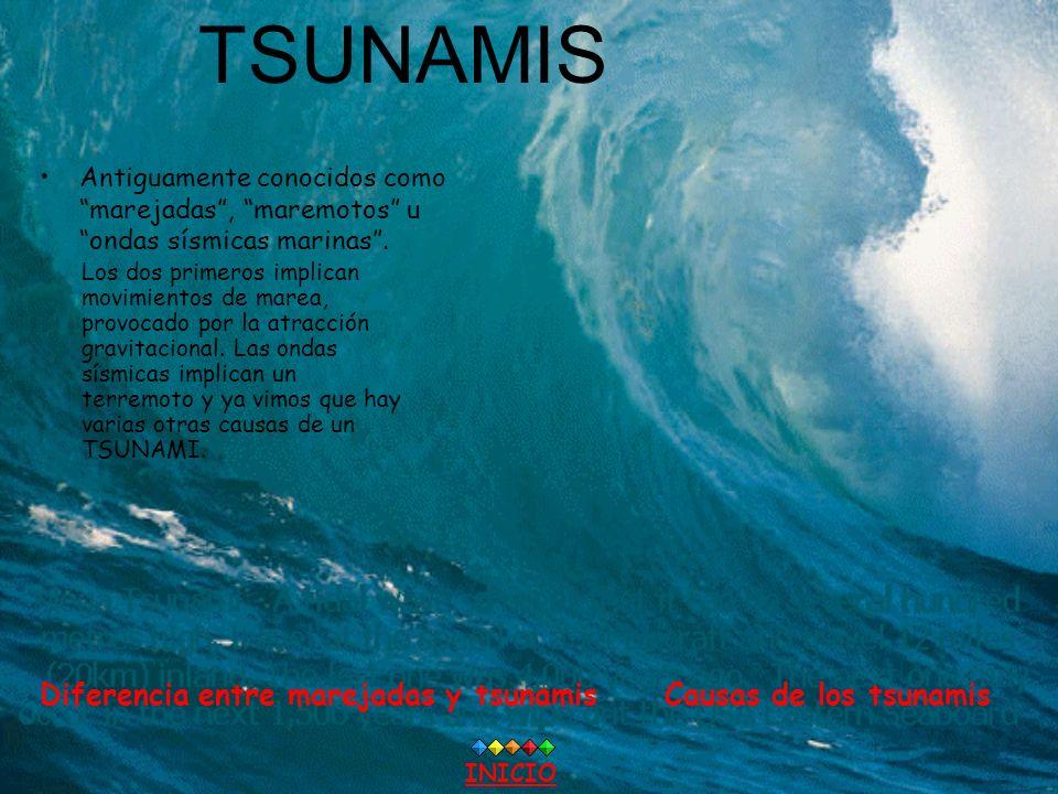 TSUNAMIS Diferencia entre marejadas y tsunamis Causas de los tsunamis