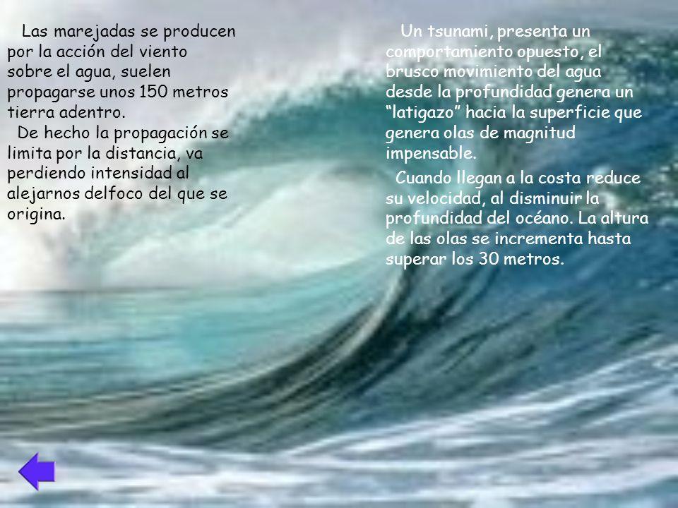 Las marejadas se producen por la acción del viento sobre el agua, suelen propagarse unos 150 metros tierra adentro.