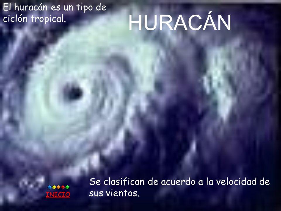 HURACÁN El huracán es un tipo de ciclón tropical.