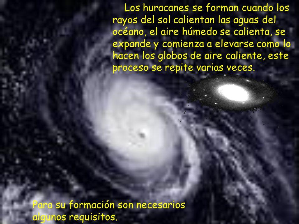 Los huracanes se forman cuando los rayos del sol calientan las aguas del océano, el aire húmedo se calienta, se expande y comienza a elevarse como lo hacen los globos de aire caliente, este proceso se repite varias veces.