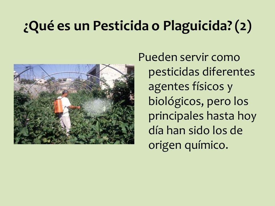 ¿Qué es un Pesticida o Plaguicida (2)