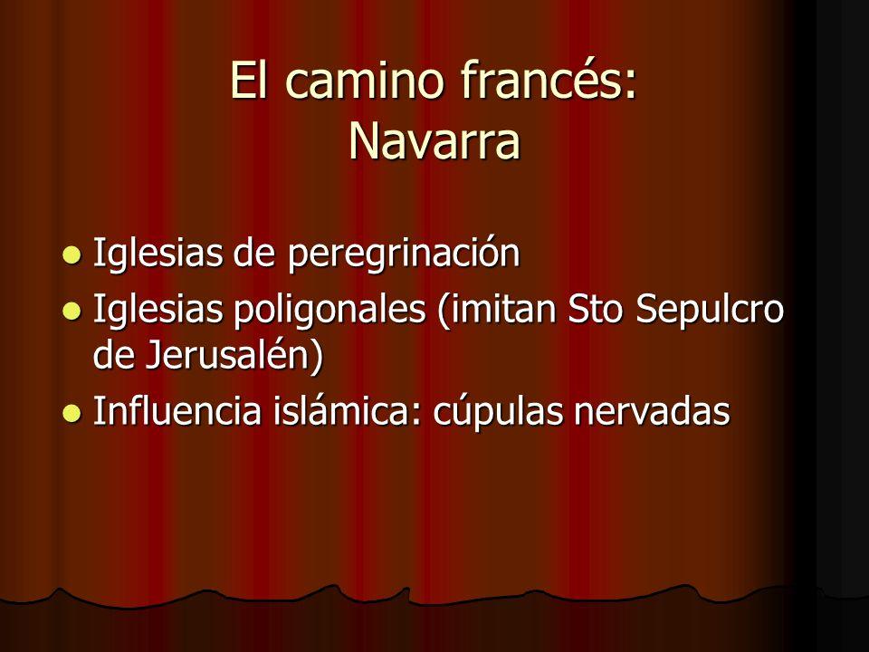 El camino francés: Navarra